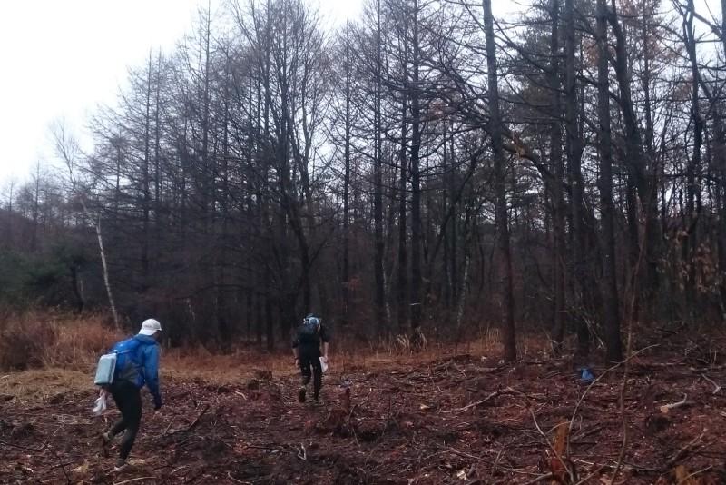 森の中へ消えるトップチーム
